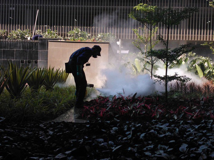 Thermal- fogging for mosquito